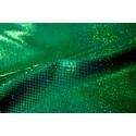 Holograma Verde Oscuro